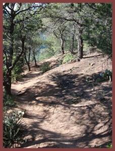 Pino Trail