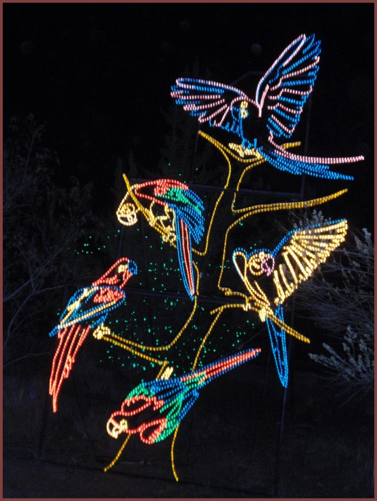 Birds<br /><br />Albuquerque BioPark River of Lights