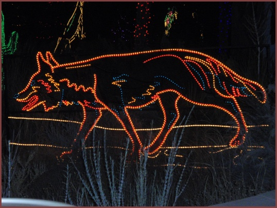 Coyote<br /><br />Albuquerque BioPark River of Lights