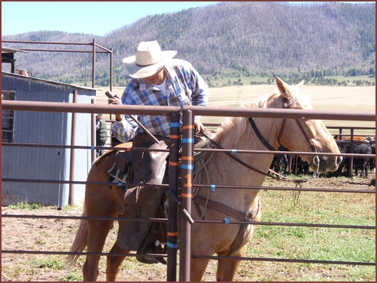 Cowboys (Valles Caldera)